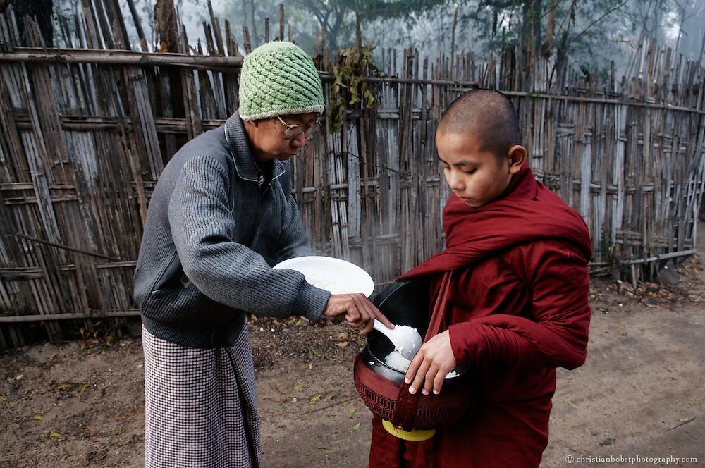 Novice Monk, myanmar, burma