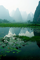 Lily pads across a pond reflecting the distinctive limestone karsts of the guilin and yangshuo region.