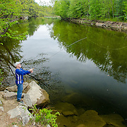 Springtime fly fishing in the Saco River