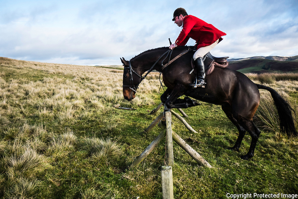 Ronan Brown, joint Master of the Jedforest Hunt, jumps a fence in the Border hills.