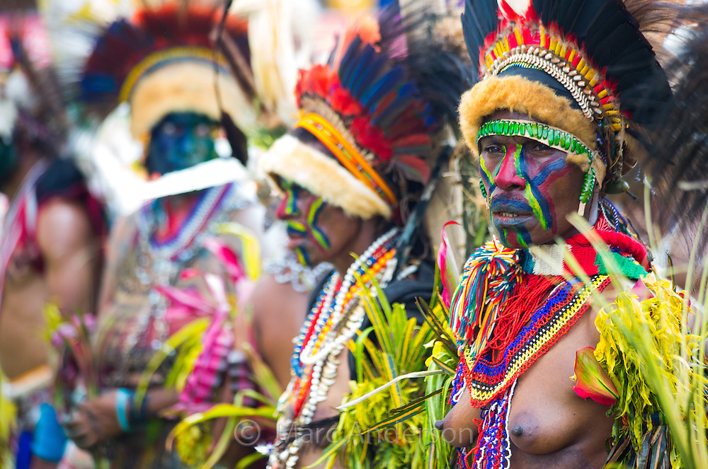 Group of women wearing elaborate tribal headdresses made with bird's feathers at the Goroka show in papua New Guinea.