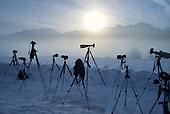 Photographers, Alaska