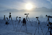 Cameras, tripods, Chilkat River, Sunrise, Winter, cold, snow, Haines, Alaska