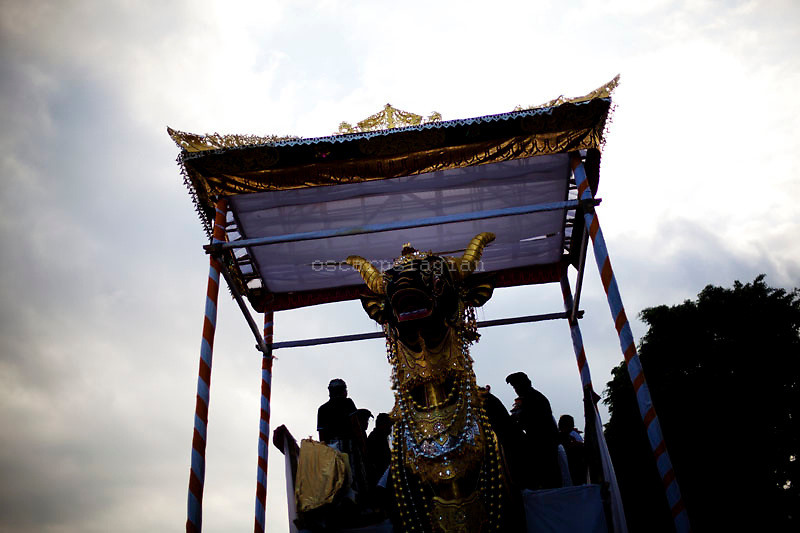 The Lembu prepared for cremation ceremony in Pelebon ceremony of Anak Agung Niang Rai of Puri Agung Ubud, The wife of King Of Ubud. Pelebon Ceremony or  Ngaben ceremony is a ceremony to purify and return the  five element of the universe that form the life itself in human body to the universe
