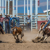Old-Timers Team Roping
