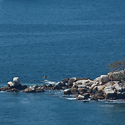 Kayakers near rock island. Acapulco, Guerrero, Mexico.