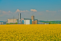 Industry and agriculture meet under a glorious blue sky in a field of vibrant yellow.  Aargau, Switzerland.