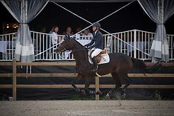 Van Den Brink Stefanie, NED, Baronescha<br /> De Kraal International 2017<br /> © Hippo Foto - Sharon Vandeput<br /> 25/08/17