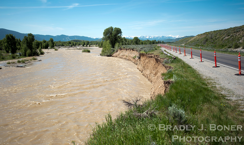 As of Tuesday afternoon, the Gros Ventre had eroded the bank to within about six feet of the Gros Ventre Road, prompting Grand Teton National Park officials to close the roadway indefinitely.
