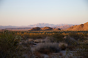 Desert Landscape at Joshua Tree National Park