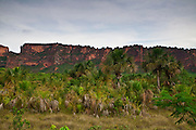 Chapada dos Guimaraes_MT, Brasil...Imagens do Parque Nacional da Chapada dos Guimaraes no Estado do Mato Grosso...The Chapada dos Guimaraes National Park  is a national park in the Brazilian state of Mato Grosso...Foto: JOAO MARCOS ROSA  / NITRO..
