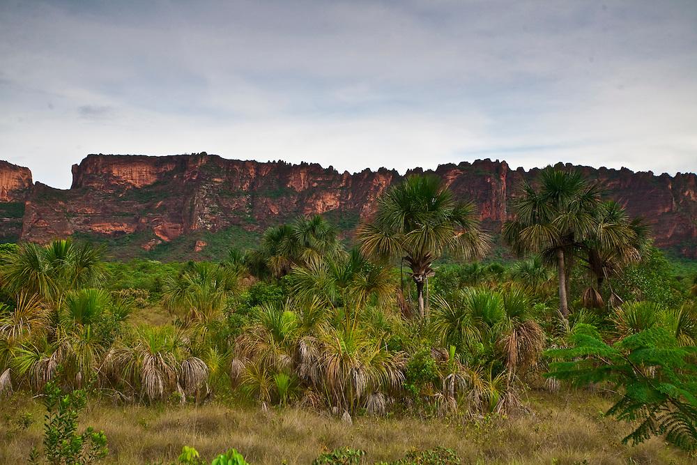Chapada dos Guimaraes_MT, Brasil...Imagens do Parque Nacional da Chapada dos Guimaraes no Estado do Mato Grosso...The Chapada dos Guimaraes National Park  is a national park in the Brazilian state of Mato Grosso...Foto: JOAO MARCOS ROSA  / NITRO..