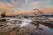 Florida Seascapes, Beaches, & Islands