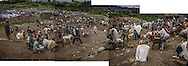 "Ethiopian highlander pastoralists selling livestock at the weekly market in a region recovering from drought.  The rains have arrived heavier than usual, ending the drought, but experts worry that the rains are so heavy that they may lead to crop failures.  This region in the Northern Ethiopian Highland have been rated by USAID as at risk of ""high"" to ""extreme"" food insecurity.  Lalibela, Ethiopia"