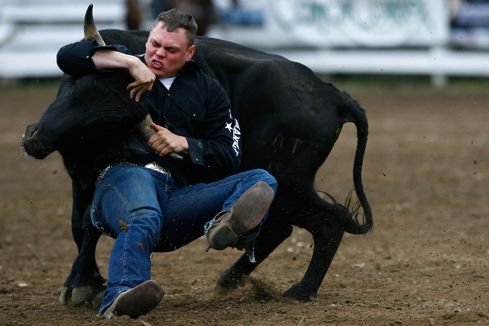 061911-Evergreen, COLORADO-evergreenrodeosun-C.J. Kerr, of Paradise, TX, wrestles a steer to the ground during the Evergreen Rodeo Sunday, June 19, 2011 at the El Pinal Rodeo Grounds..Photo By Matthew Jonas/Evergreen Newspapers/Photo Editor