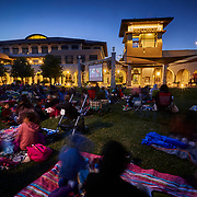 Brentwood Movies in the Park