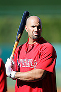 ANAHEIM, CA - JUNE 06:  Albert Pujols (5) of the Los Angeles Angels of Anaheim takes batting practice before the game against the Seattle Mariners on Wednesday, June 6, 2012 at Angel Stadium in Anaheim, California. The Mariners won the game 8-6. (Photo by Paul Spinelli/MLB Photos via Getty Images) *** Local Caption *** Albert Pujols