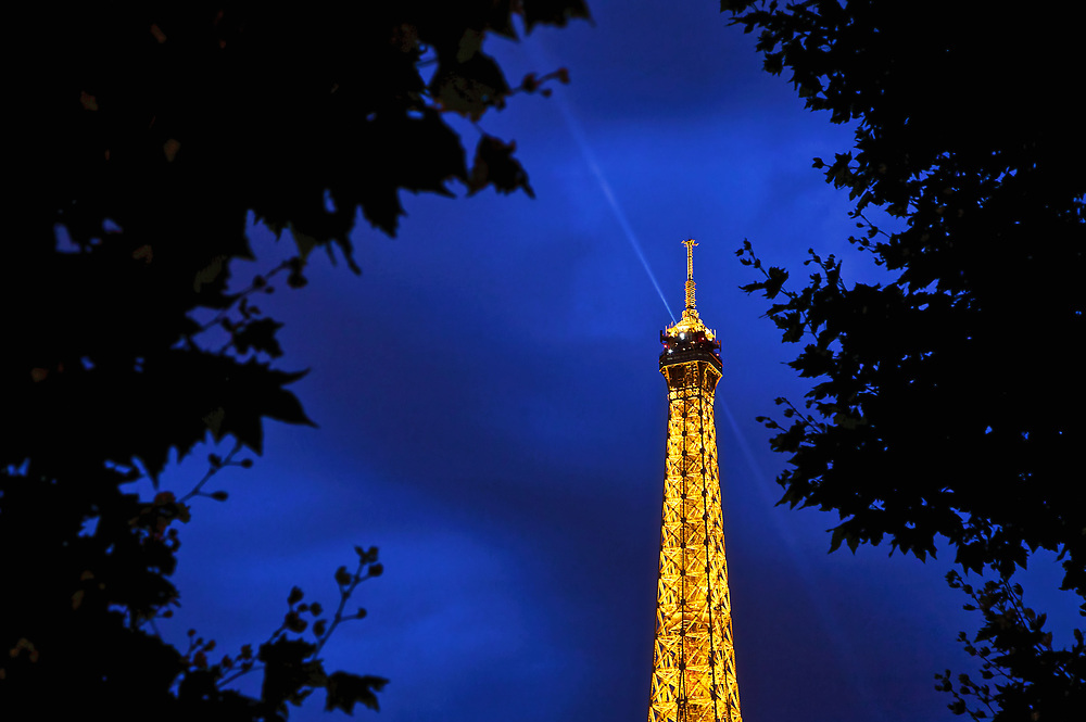 I love the rich colours of the Eiffel Tower against the<br /> midnight blue sky &ndash; contrasted with the silhouette of the trees.