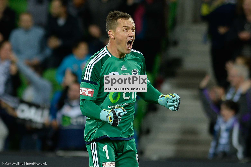 Danny Vukovic (GK) of Melbourne Victory celebrates a goal scored by Besart Berisha of Melbourne Victory to put Victory ahead 2:0 in the 1st half of the Westfield FFA Cup Final, 7th November 2015, Melbourne Victory FC v Perth Glory FC - © Mark Avellino | SportPix.org.uk