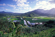 Hanalei Valley, Kauai, Hawaii<br />