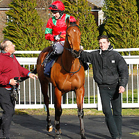 Monsieur Lavene and Tom Queally winning the 1.40 arce
