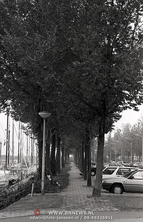 NLD/Huizen/19930922 - Iepen bij de oude Haven in Huizen