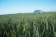 Audi Q7 in a field of wheat near Ingolstadt, Germany.