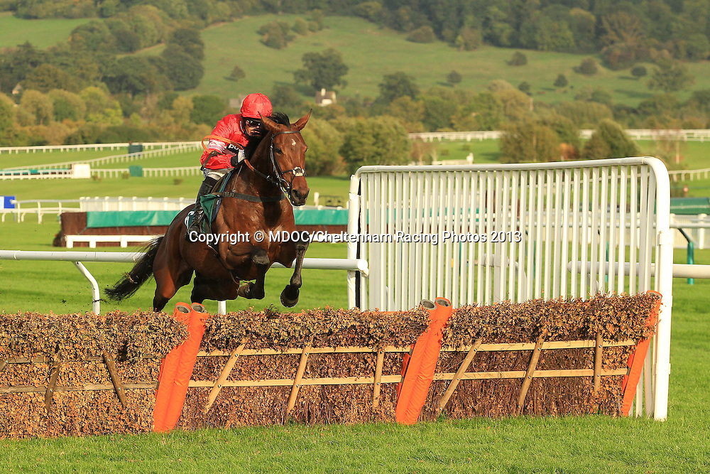 The Jack Dee Here on 31st October Maiden Hurdle Race during Day One of the Showcase Meeting at Cheltenham Racecourse, their first meet of the 2013/14 jump season. Friday 18  October  2013.  Cheltenham, UK.<br /> <br /> Photo Credit: MDOC/Cheltenham Racing Photos<br /> <br /> &copy; MDOC/Cheltenham Racing Photos 2013. <br /> All rights reserved, see instructions.