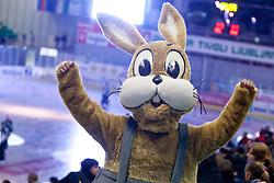 Vaillant mascot during ice-hockey match between HDD Tilia Olimpija and SAPA Fehervar AV19 at second match in Quarterfinal  of EBEL league, on Februar 21, 2012 at Hala Tivoli, Ljubljana, Slovenia. (Photo By Matic Klansek Velej / Sportida)
