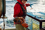 FISHERWOMEN ? CATCHING LOBSTERS !  TOUGH JOB,  BIG CLAWS  !