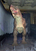 Tyrannosaurus (Tie-ran-oh-sore-us) Tyrant lizard was the largest meat-eater ever to live on Earth.  The whole animal was 12 metres long.  It may have ambushed its prey as well as being a scavenger.
