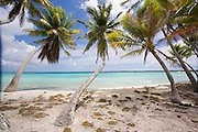 Beach, Takapoto, Tuamotu Islands, French Polynesia<br />
