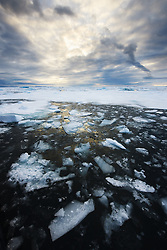 Ocean ice near Nordaustlandet, Svalbard