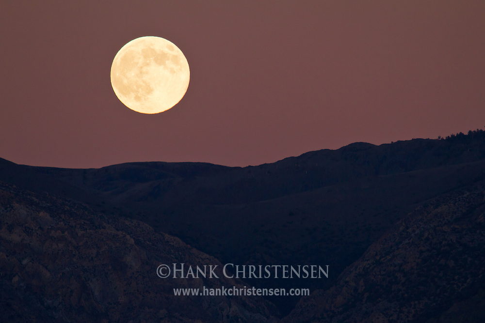 A full moon rises at sunset over the White Mountians from the Owens Valley.  The setting sun reflects off of particles in the air to cast the moon in a red hue.