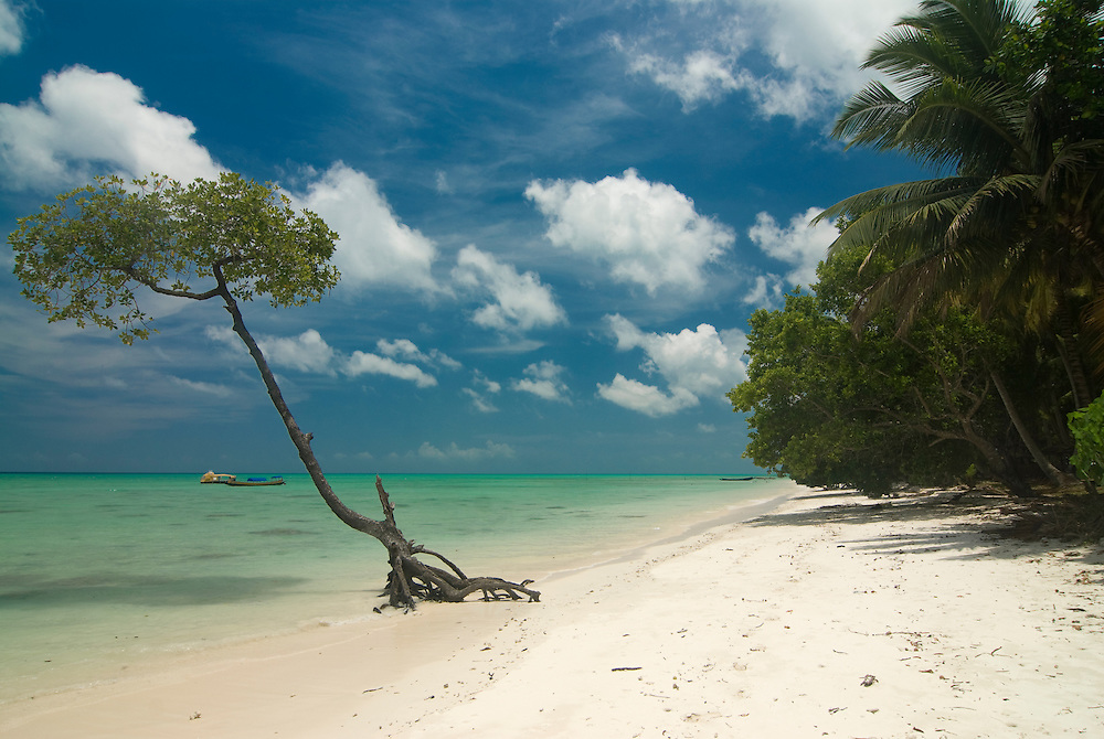 Silver sand beach with turquoise Indian Ocean. Havelock Island. Andaman Isles. India.