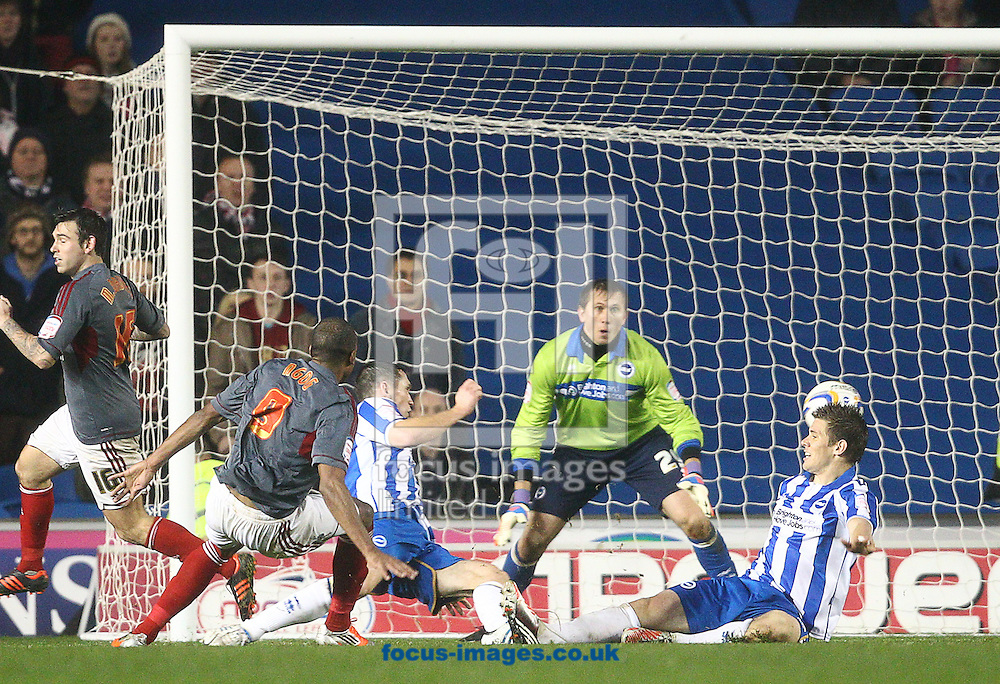 Picture by Paul Terry/Focus Images Ltd +44 7545 642257.24/11/2012.David N'Gog (2ndL) of Bolton Wanderers scores to make it 1-1 during the npower Championship match at the American Express Community Stadium, Brighton and Hove.