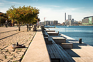 A picture of the waterfront at Islands Brygge in Copenhagen.