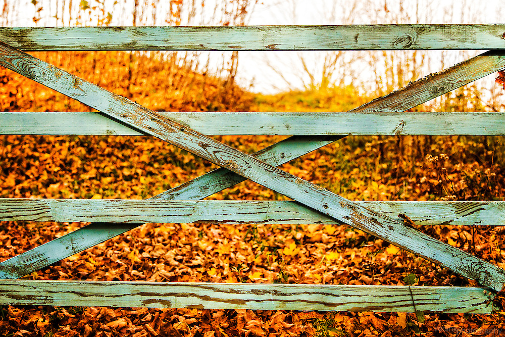 Old wooden fence with colored leaves of fall along Old Kings Highway in Pomfret, VT.
