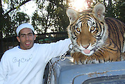 CARLOS TEVEZ. -The International Argentine Soccer player enjoy his family holidays,  in Buenos Aires Argentina..Here CARLOS TEVEZ  wife a TIGRE over one of his family car..TEVEZ its now the key player at the England team WEST HAM, but with a great chance to move to one of the best European clubs..Here 18/05/2007 with his family at the LUJAN OPEN ZOO. - 50Km west of Buenos Aires, where TEVEZ enjoy to be INSIDE The YON jail. Even with a TIGRE a monkey and did a trip over a camel .© PikoPress