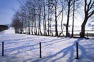 BEL, Belgium, Eastbelgium, snow covered fields near Robertville.....BEL, Belgien, Ostbelgien, schneebedeckte Felder bei Robertville.........