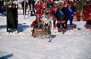 Samis (lap people). raindeers race during Easter festival in Kautokeino  Lapland  Norway        Les Samis (lapons); Courses de rennes durant les fÍtes de paques ? Kautokeino   Laponie,   Norvege       L004774  /  R00330  /  P111324
