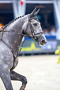 Marco Brinkmann - Fair Field<br /> FEI World Breeding Jumping Championships for Young Horses 2016<br /> © DigiShots