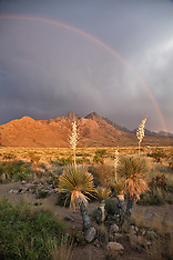 Organ Mountains - Las Cruces, NM  photos