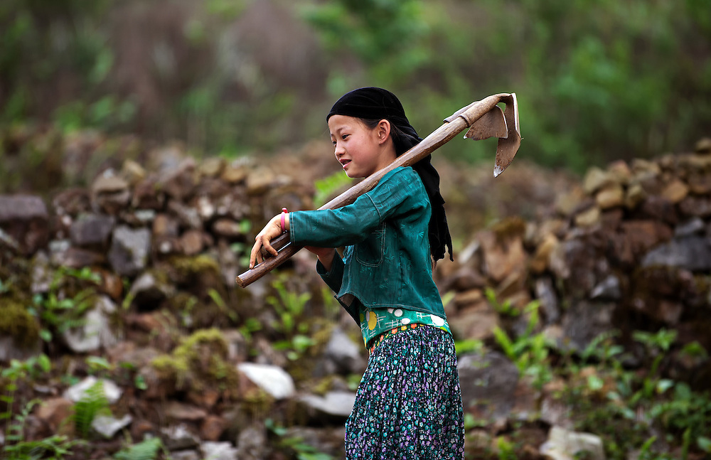 A girl working in the corn fields near Ha Giang, Vietnam.