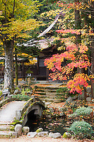 Japan Takayama Hokke-ji Temple garden with stone bridge Autumn