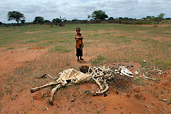 Hussein, 8, stands in front of a cow carcass May 12, 2006 in his village of Dasheq near Wajir, Kenya. Most pastoralists lost nearly 90 percent of their animals in the ongoing drought and the animals that did survive are getting about half of the normal market rate. During the past decade, the frequency of drought has been increasing with shorter recovery periods, having an intense impact on the pastpralists who are among the regions most vulnerable population. Of the more than 8 million people in need of humanitarian assistance in the Horn of Africa, 1.6 million are children below the age of five years, threatened mainly by malnutrition. The loss of the animals, prime sources of meat and milk and the main financial assets of the pastoralists,  has created a spiralling cycle of poverty and insecurity. (Ami Vitale)