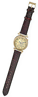 Anne Klein Crocodile Watch with Gold Face