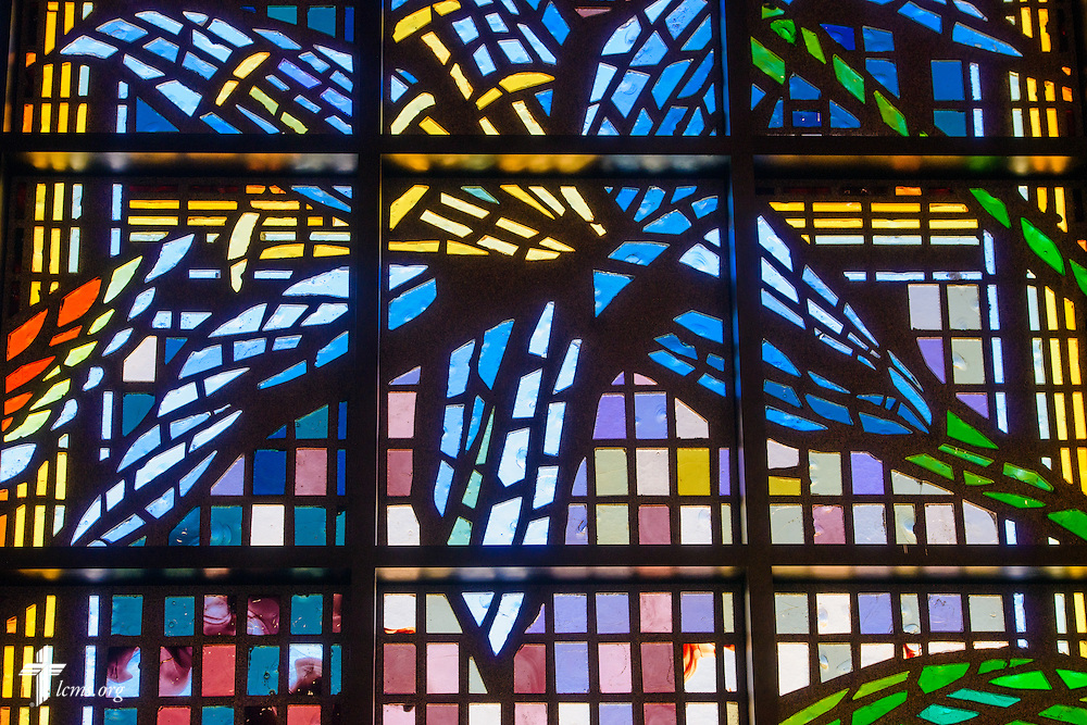 Stained glass of a lily at St. Luke's Lutheran Church on Sunday, March 6, 2016, in Oviedo, Fla. LCMS Communications/Erik M. Lunsford