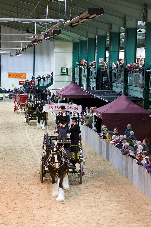 Shire Horse Society Spring Show 2017  Single Trade Turnouts