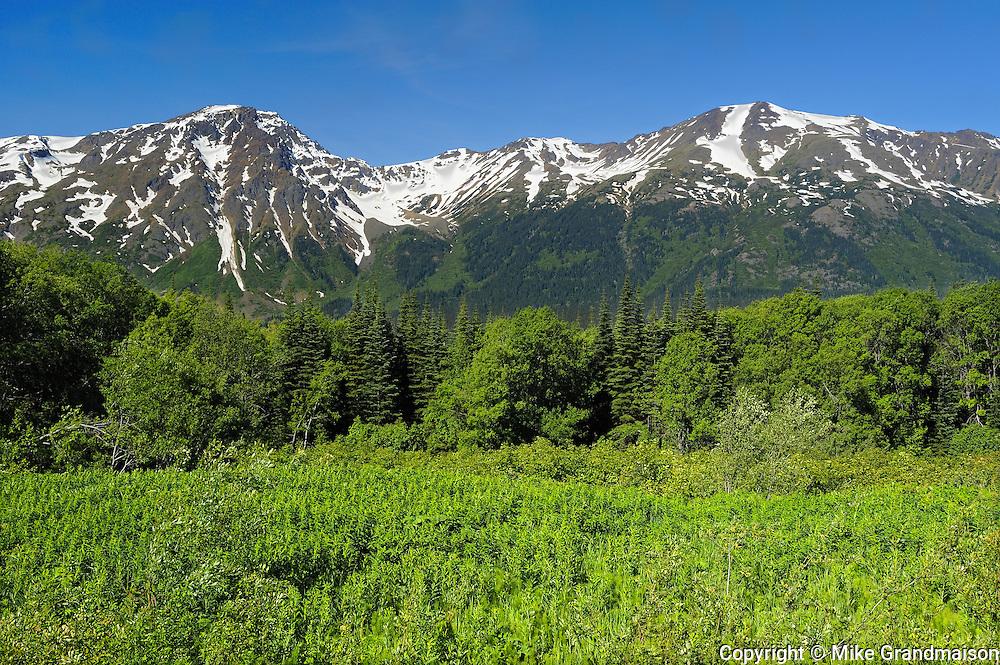Coast Mountains<br /> Mt. Edziza Provincial Park<br /> British Columbia<br /> Canada